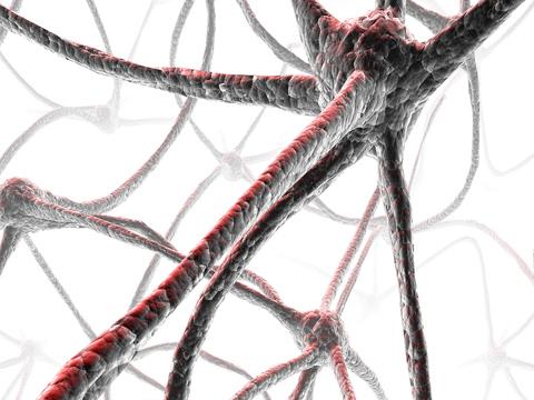 Rémisztő tudományos áttörés: sikerült memóriaátvitelt megvalósítani
