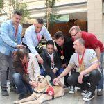 Az Irigy Hónaljmirigy tagjai ezért választották kutyáikat menhelyről