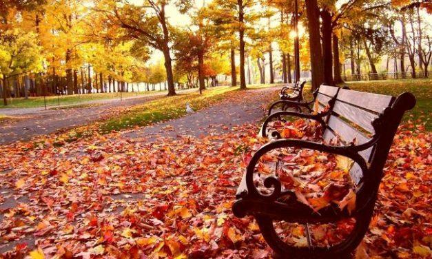 13 őszi dal, ami segít elviselni a rossz időt