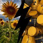 Sokkoló jelentés: csernobili mutánsfarkasok áraszthatják el Európát