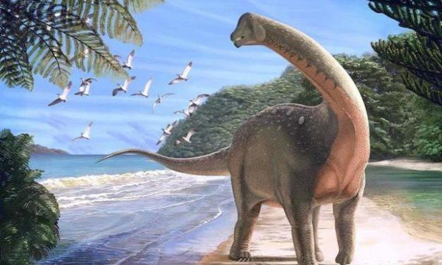 Különleges módon védekeztek a hőguta ellen a dinoszauruszok