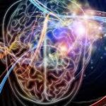 Magyar felfedezés született, ami segíthet a sérült idegsejtek megmentésében