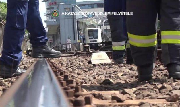 Napi cukiság: kacsacsaládot mentettek a metróból budapesti tűzoltók – Videóval