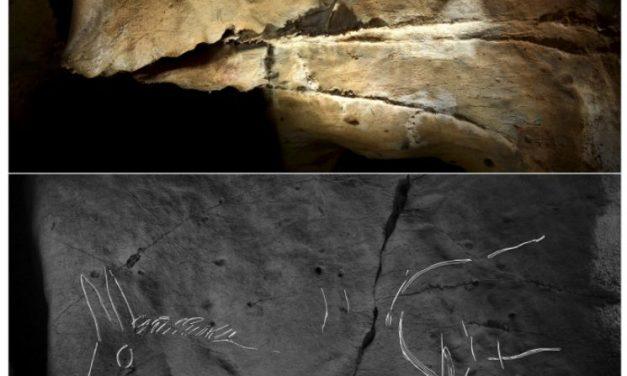 Meredek barlangi szakadékban is alkottak a gravetti kultúra művészei